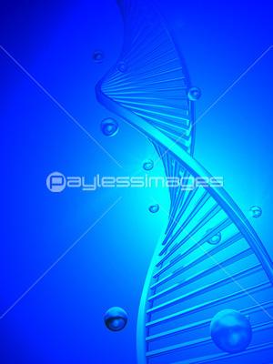 DNA 4